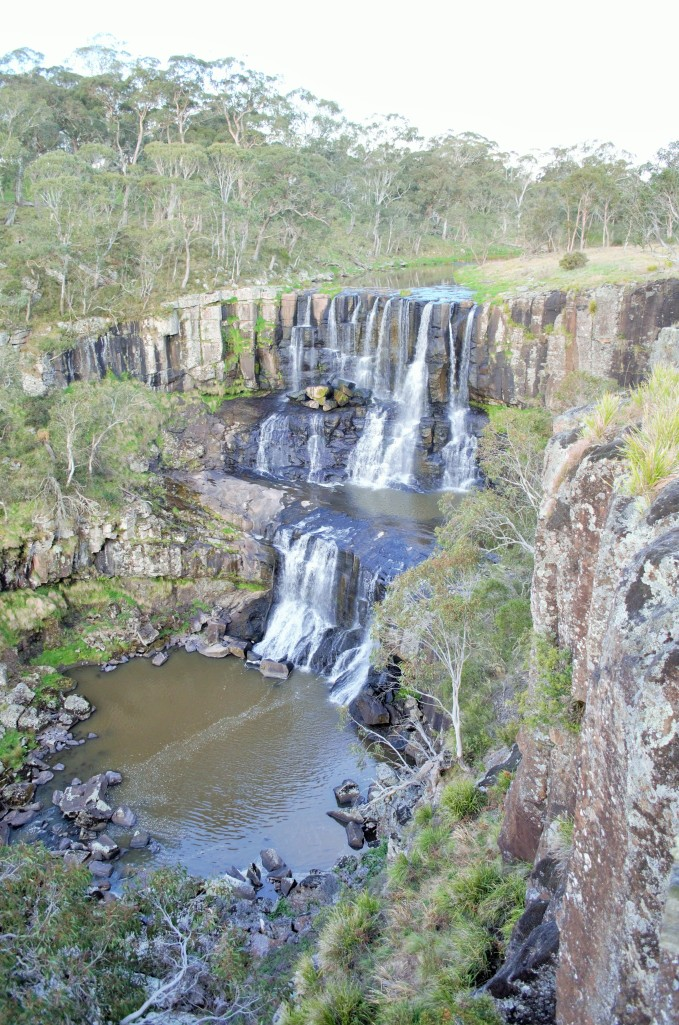Ebor Falls, definitely worth stopping at if you are driving passed. It is only a couple of hundred meters from the main road to boot.