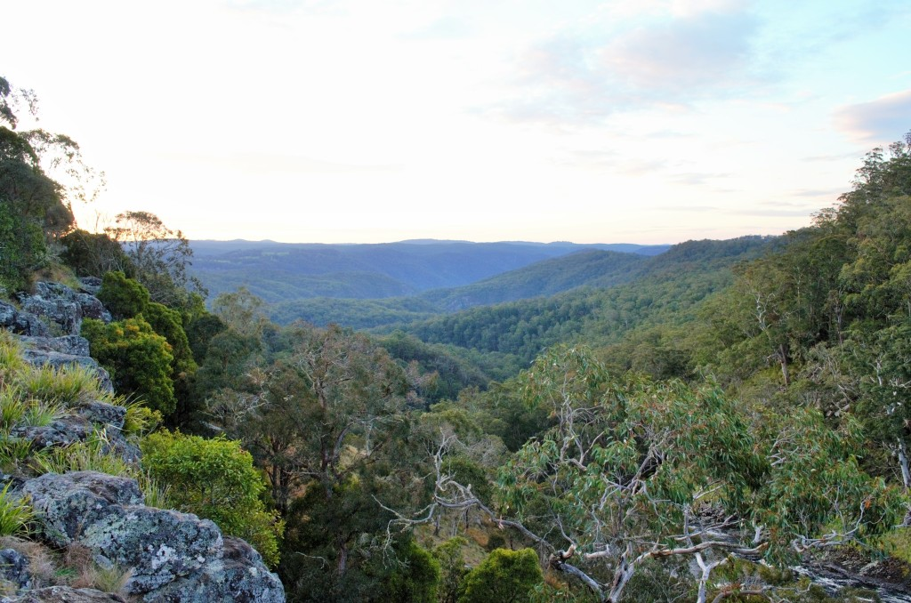 Looking out from Ebor Falls.